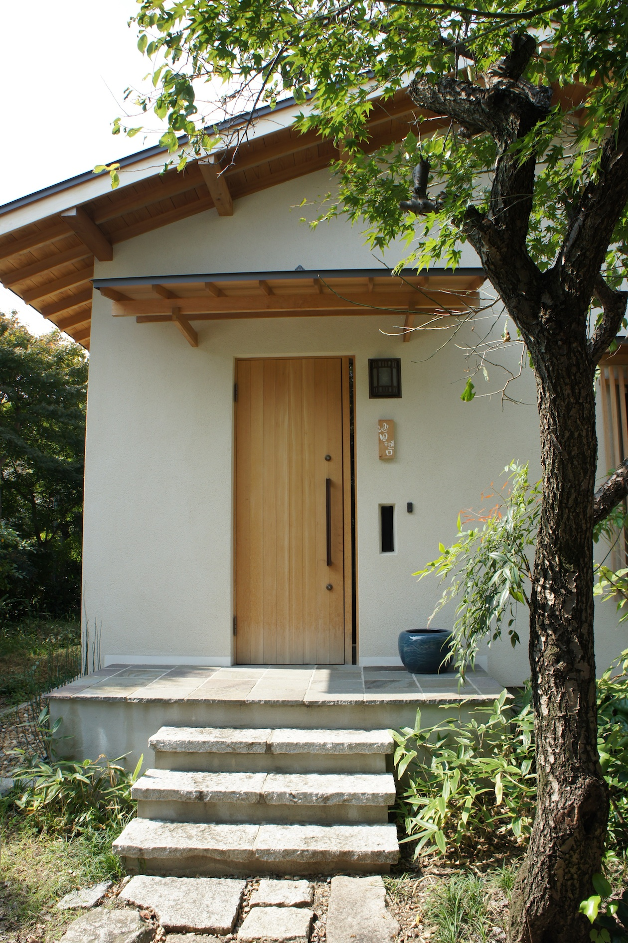 Higuchi3